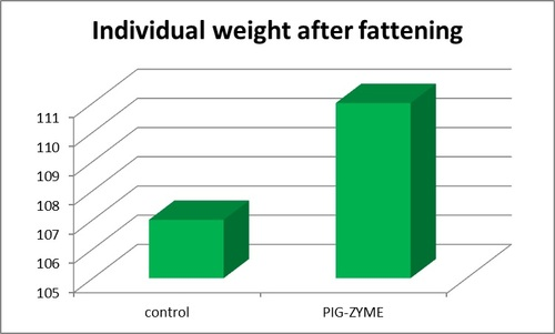 Individual weight pig-zyme