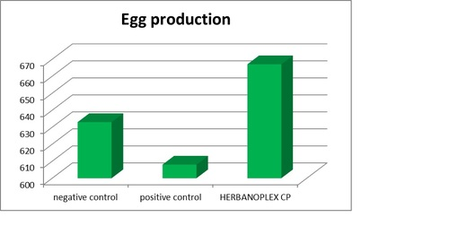 Egg production Herbano