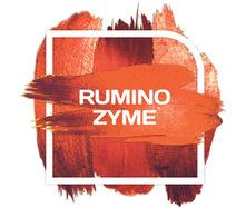 Rumino Zyme