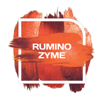 Rumino Zyme® road-show in Argentina