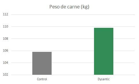 dysantic-es3