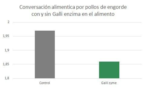 galli-es3