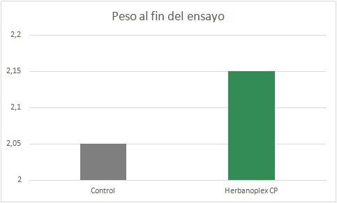 herba-es1