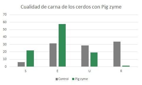 pig-es3