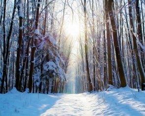 2 night Siesta between the winter holidays