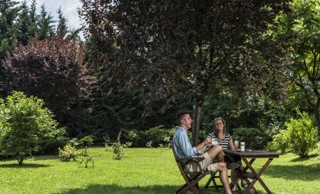 drink a beer or refreshing drink in the garden of the Jagello Hotel