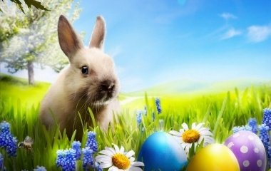 Húsvéti Csomag