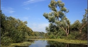 Balaton felvidéki Nemzeti Park, Kis – Balaton