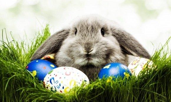 AKCIÓ! Hagyományőrző Húsvét most 34 500 Ft/fő/éj HELYETT