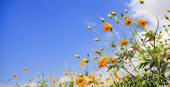 Tavaszi pihentető hétköznapok LAST MINUTE áron