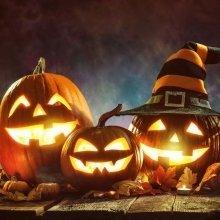 November 1th Holiday and Wellness