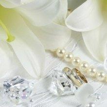 Hochzeitsreise – in Süßer Zweisamkeit