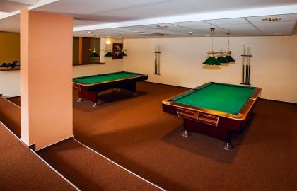Erzsébet Park Hotel - Biliárd terem