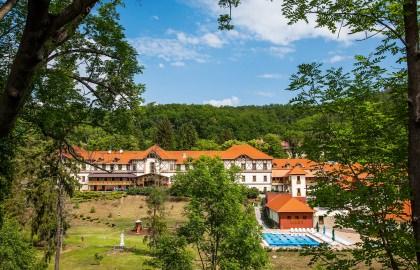 Erzsébet Park Hotel - Főépület az erdőből