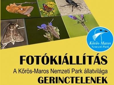 Fotókiállítás - a Körös-Maros NP állítvilága