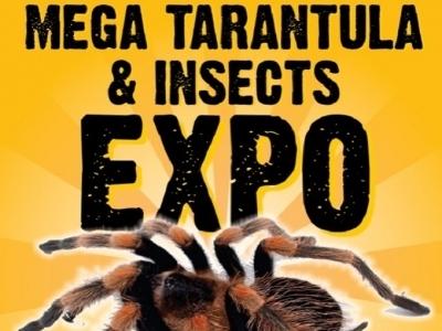 Mega Tarantula & Insects Expo