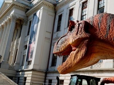 Évmilliók urai – Élethű dinók Amerikából című kiállítás Szegeden