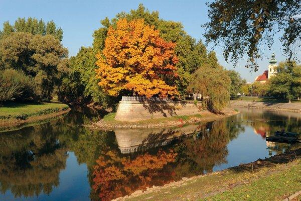 Radó-sziget. Fotó: Győr Megyei Jogú Város Önkormányzata