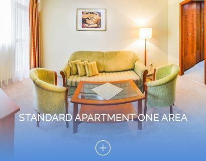 Standard apartment one area