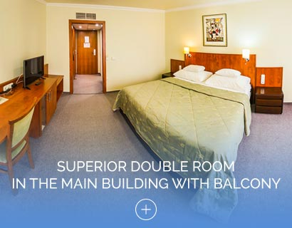 Superior Double Room in the Main Building with Balcony