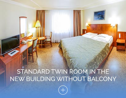 ÚStandard Twin Room in the New Building without Balcony