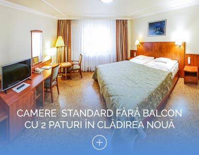 Camere  Standard fără Balcon cu 2 paturi în clădirea nouă