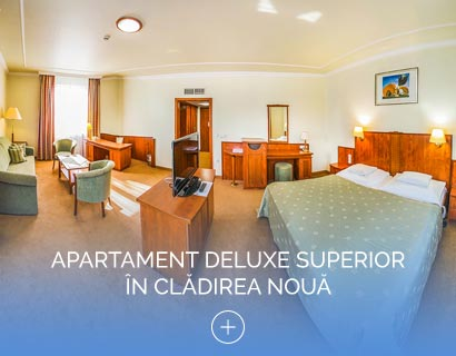 Apartament Deluxe Superior  în Clădirea Nouă