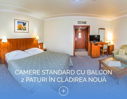 Camere Standard cu Balcon 2 paturi în clădirea nouă