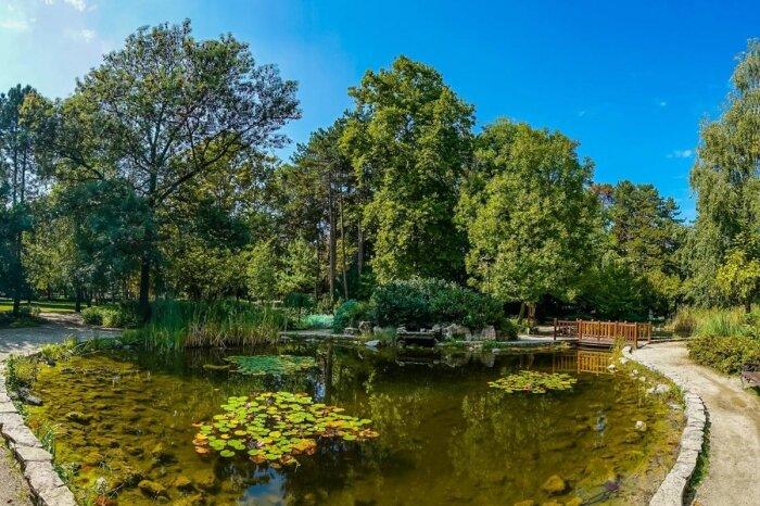Jókai park Japánkert