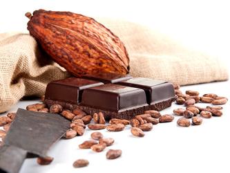 harrer-csoki12