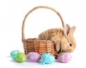 Easter Szieszta