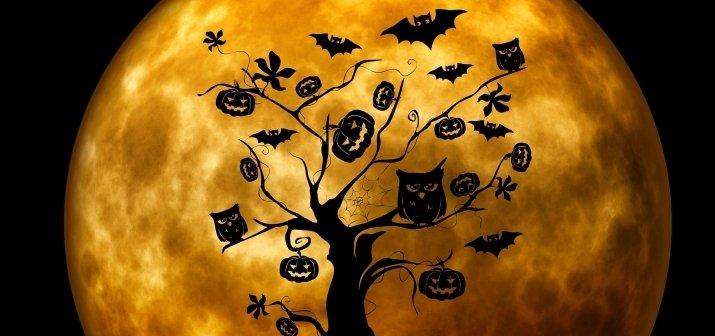 Halloween-i Szieszta