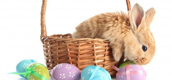 Húsvéti szieszta