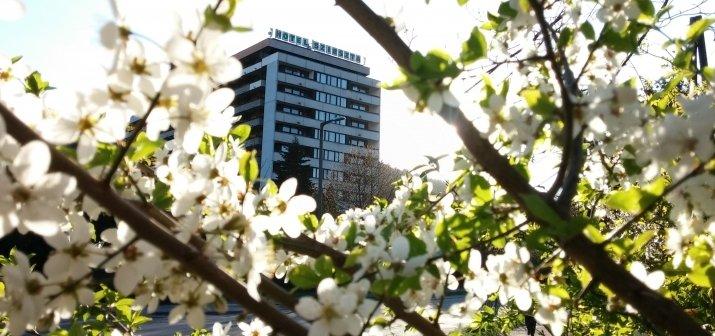 Soproni kikapcsolódás tavasszal