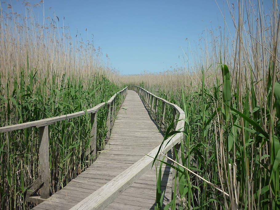 tisza-tó látnivalók felfedezése