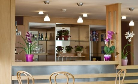 Kolo naszej restauracji znajda goscie bar i switlice.Poznaj przepiekny Budapeszt, 24 godzinna recepc