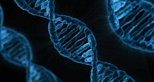 Mire képes a DNS? A szavak és a rezgések ereje