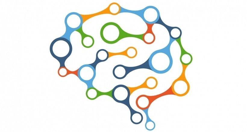 Mi teszi különlegessé az emberi agyat