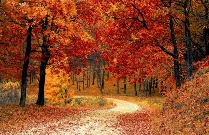 Speciális októberi nyitva tartásunk
