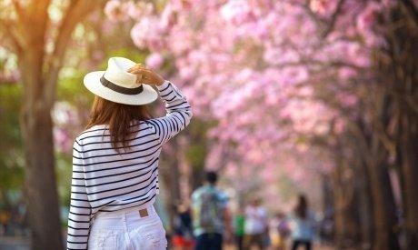 Tavaszi kedvezmény - előfoglalási árakon