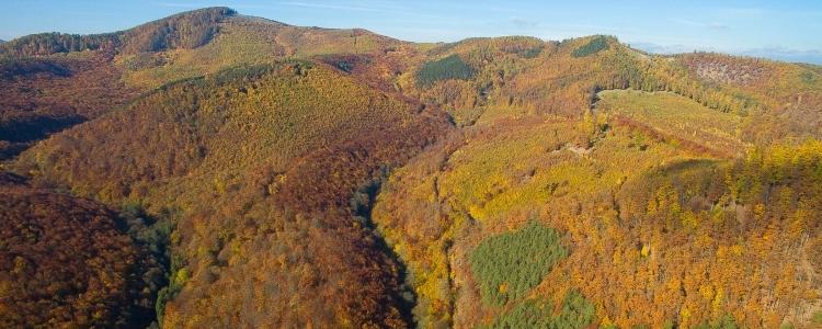 Őszi szünet vadregényes környezetben