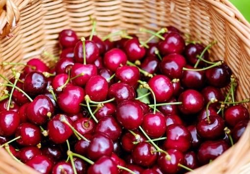 APRIL - Angebot des Monats: Kirsche