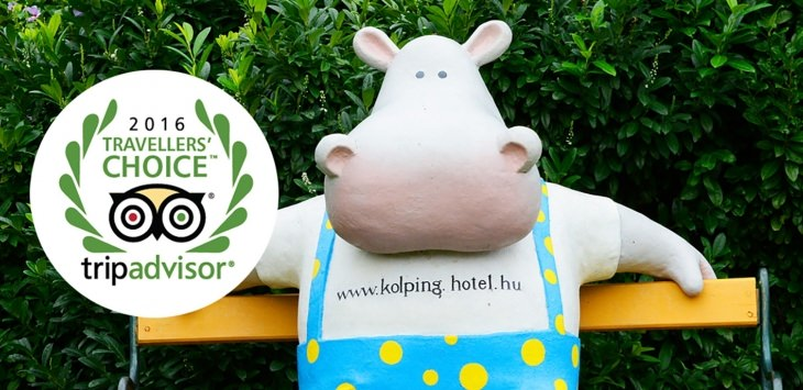 First place among the family-friendly hotels!