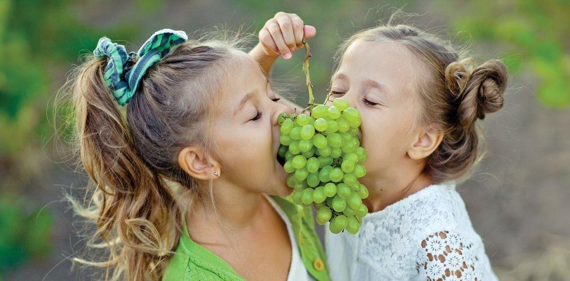 Grape picking weekend