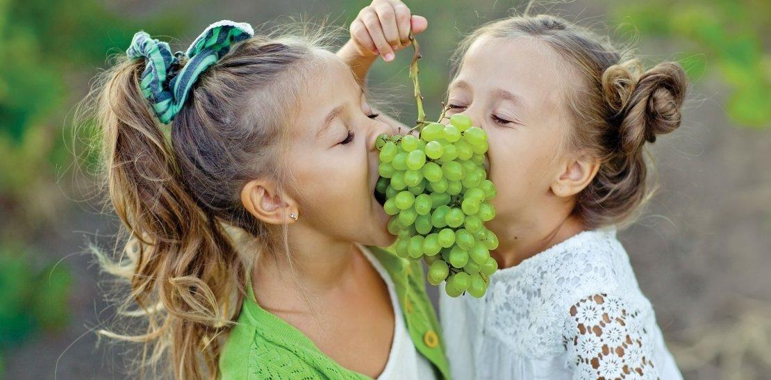 Wochenende mit Weinlese-Programm