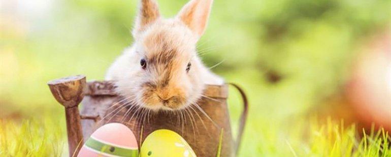 Húsvét Egerben