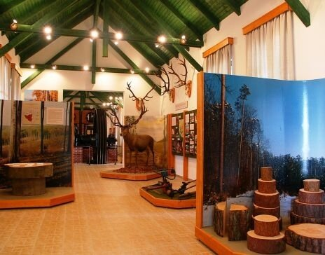 Erdészeti- és vasúttörténeti kiállítás