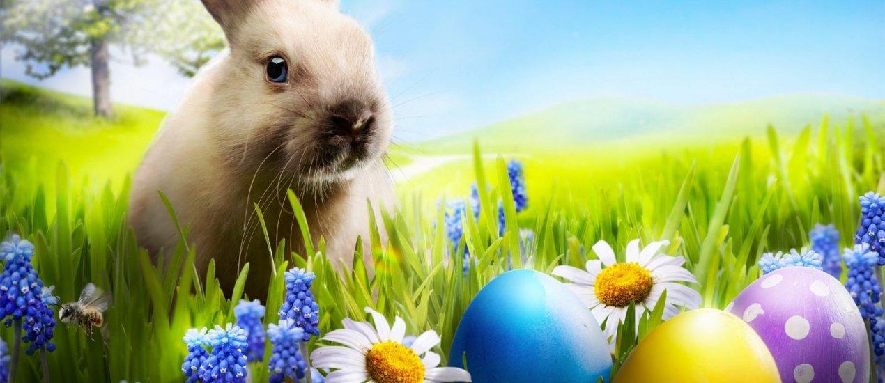 MenDan Húsvét