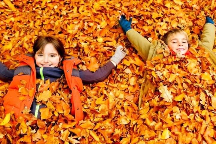 Kinderprogramme für die langen Wochenende 20-23. Oktober 2017