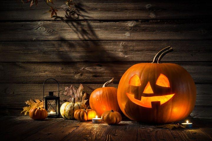 Erlebnisreiche Herbstferien in Zalakaros